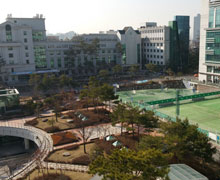 View from my office window at the Hanyang University School of Business