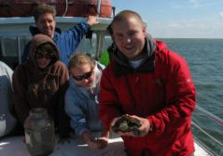 Alex displays bycatch from our crab scraping, a sea turtle.  The turtle later found its way back into the bay