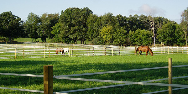 Pastures and paddocks at Albion's equestrian center.