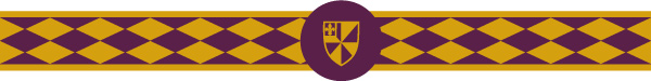 An example pattern of horse racing silks worn by a jockey, featuring Albion College's shield and its purple and gold colors.