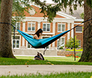An Albion College student studies in a hammock on the Quad.