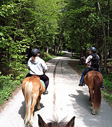 One of Mackinac Island's many horse trails