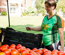Albion College Farmers Market, Aug. 29, rang in the 2013-14 Year of Sustainability.