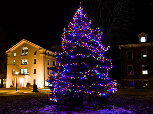Albion College's new LED tree lights use significantly less energy.