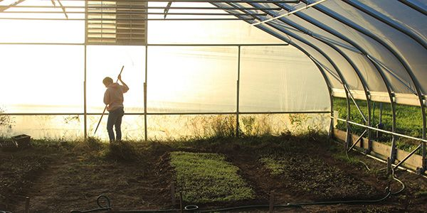 Student Farm Hoop House